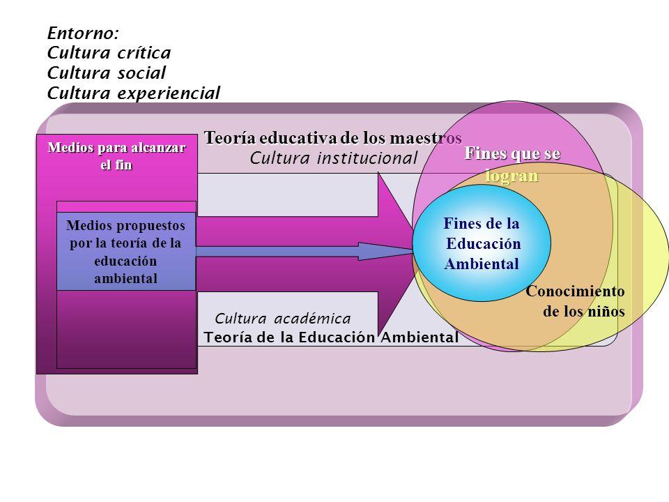 Fines que se logran Teoría educativa de los maestros