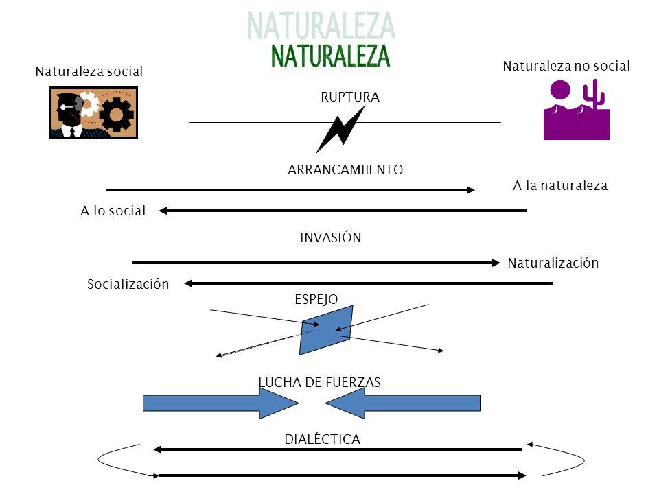   NATURALEZA Naturaleza no social Naturaleza social RUPTURA