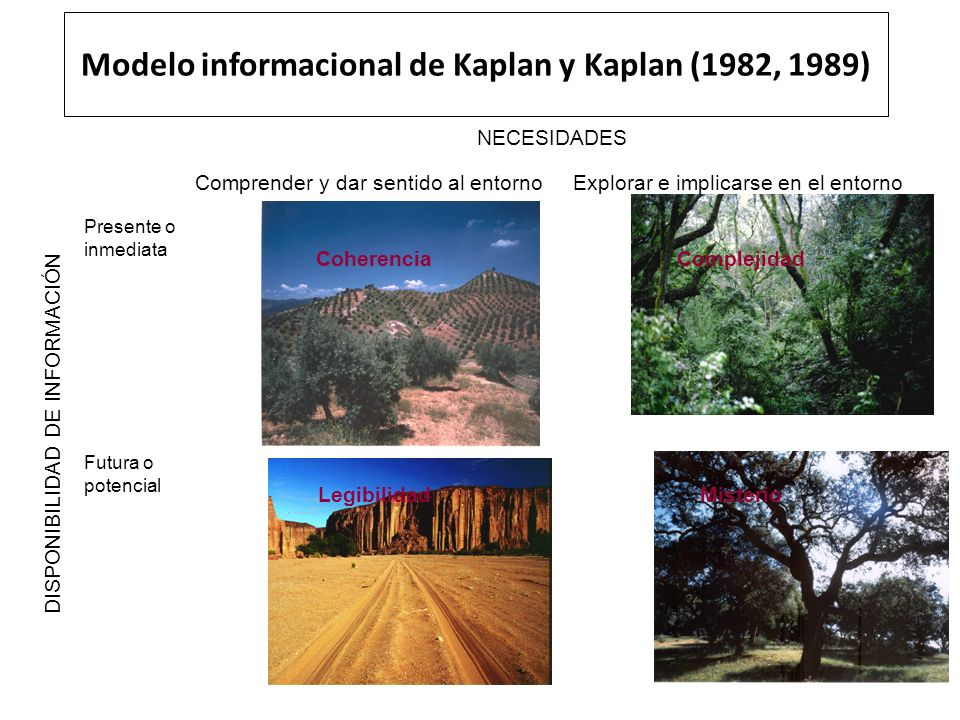 Modelo informacional de Kaplan y Kaplan (1982, 1989)