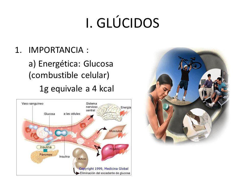 I. GLÚCIDOS IMPORTANCIA : a) Energética: Glucosa (combustible celular)