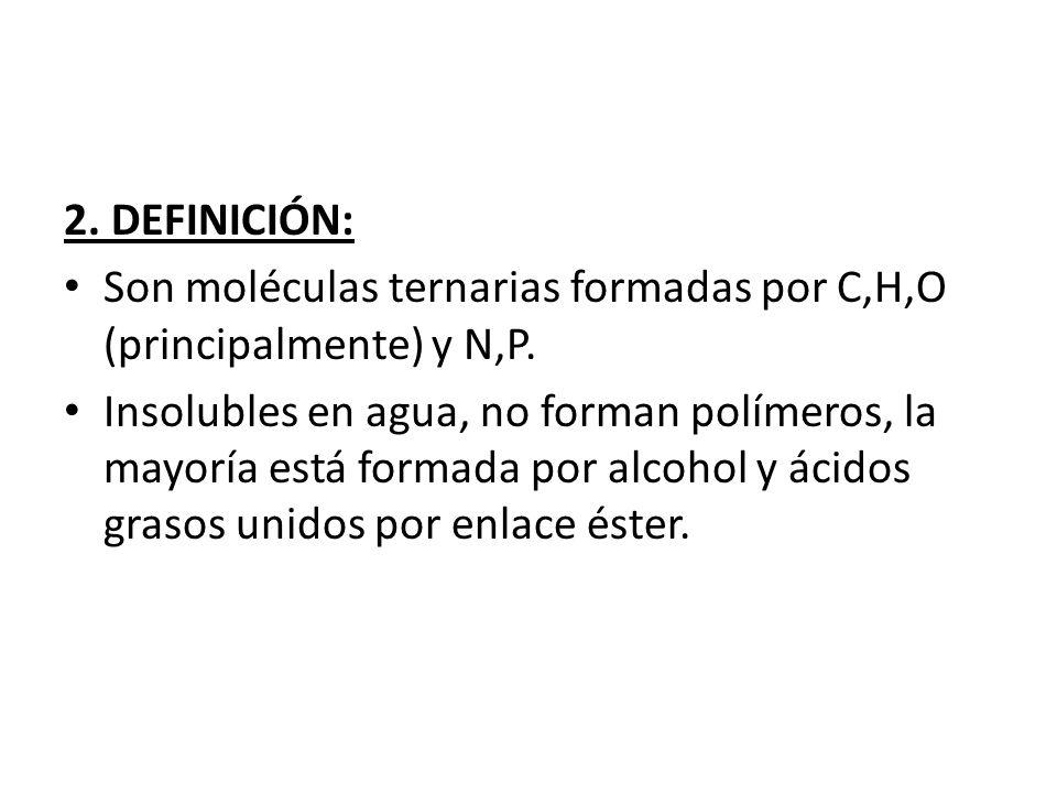 2. DEFINICIÓN: Son moléculas ternarias formadas por C,H,O (principalmente) y N,P.
