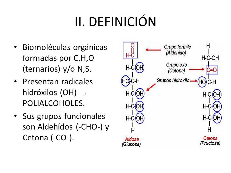 II. DEFINICIÓN Biomoléculas orgánicas formadas por C,H,O (ternarios) y/o N,S. Presentan radicales hidróxilos (OH) POLIALCOHOLES.
