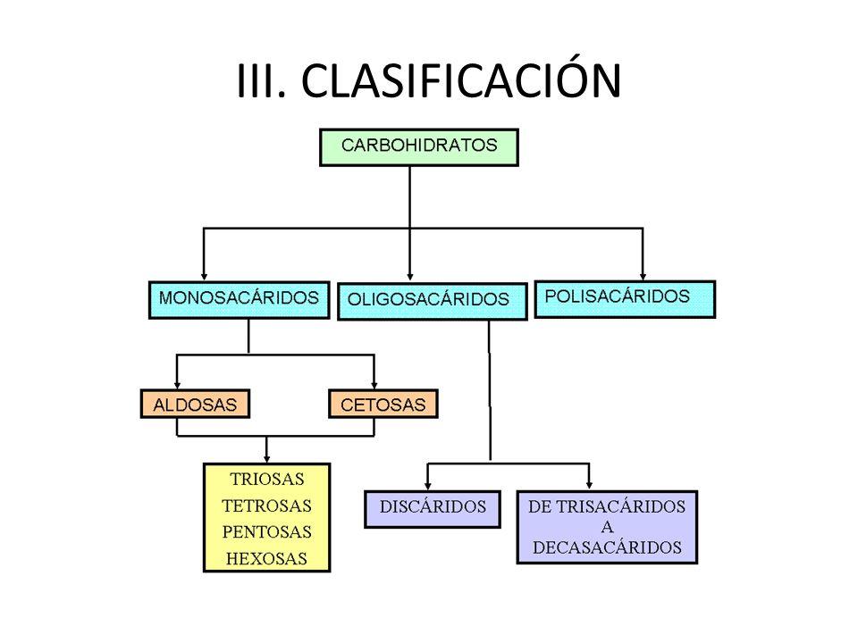 III. CLASIFICACIÓN