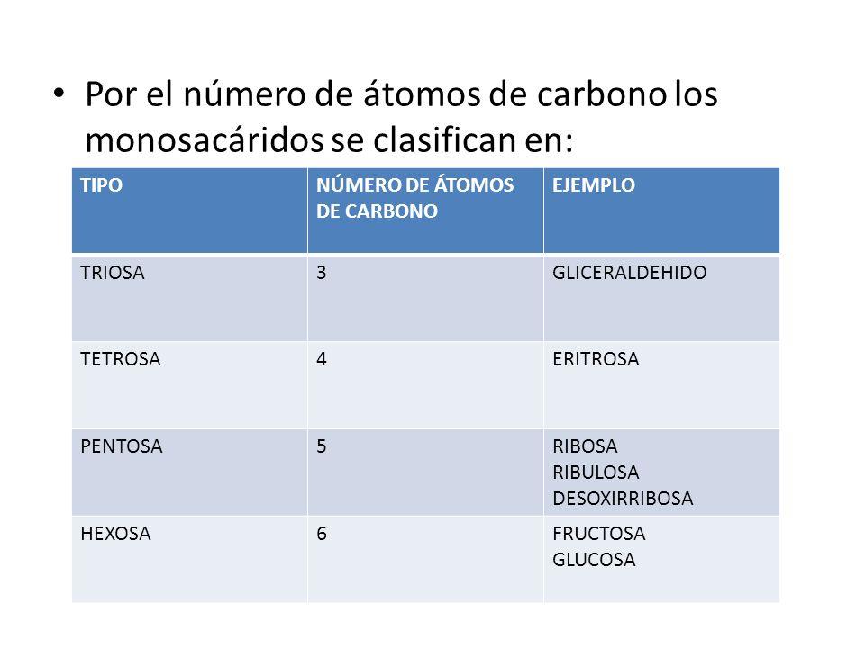 Por el número de átomos de carbono los monosacáridos se clasifican en: