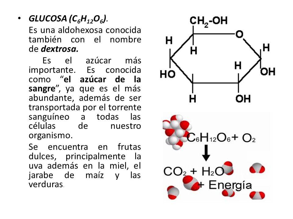 GLUCOSA (C6H12O6). Es una aldohexosa conocida también con el nombre de dextrosa.