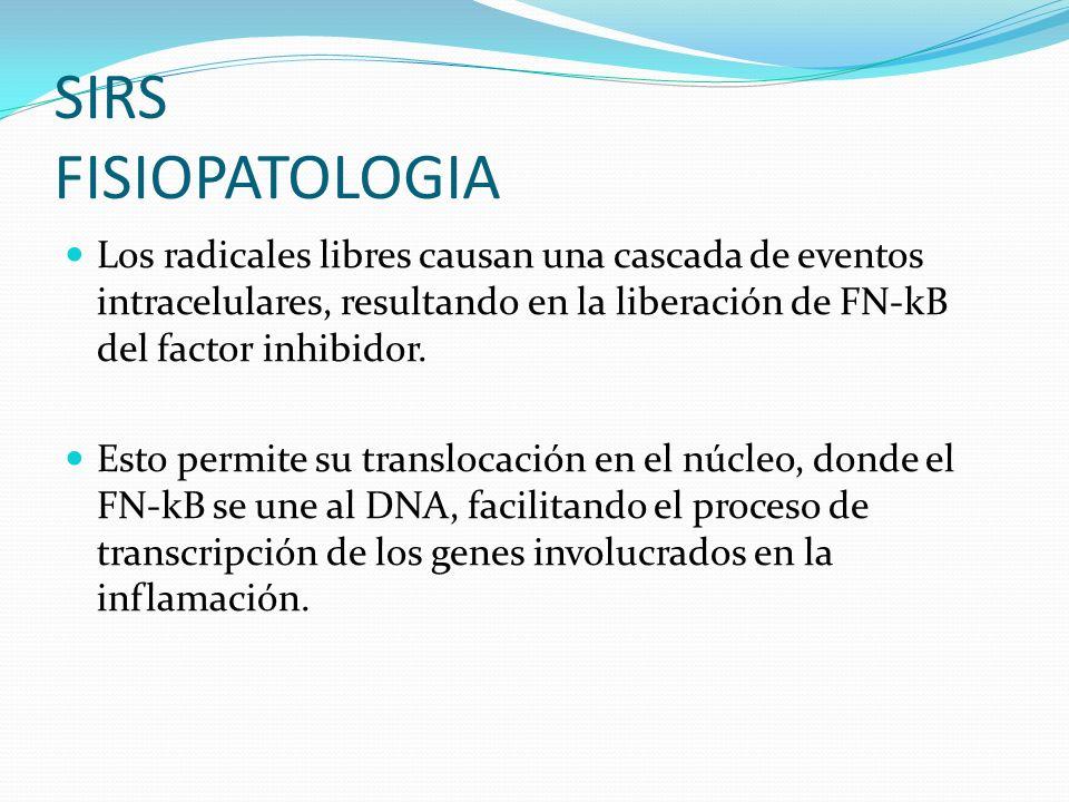 SIRS FISIOPATOLOGIA Los radicales libres causan una cascada de eventos intracelulares, resultando en la liberación de FN-kB del factor inhibidor.
