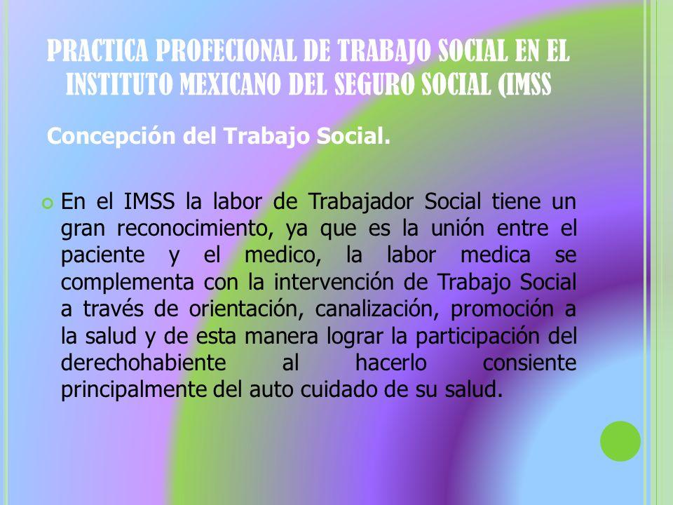 PRACTICA PROFECIONAL DE TRABAJO SOCIAL EN EL INSTITUTO MEXICANO DEL SEGURO SOCIAL (IMSS