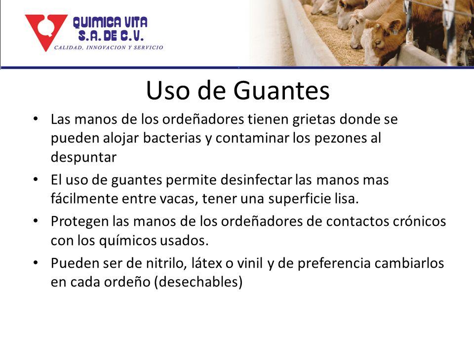 Uso de Guantes Las manos de los ordeñadores tienen grietas donde se pueden alojar bacterias y contaminar los pezones al despuntar.