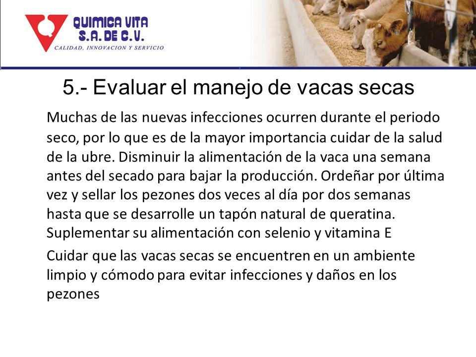 5.- Evaluar el manejo de vacas secas