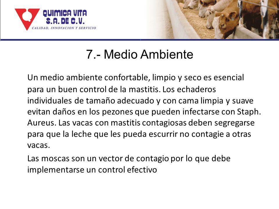 7.- Medio Ambiente