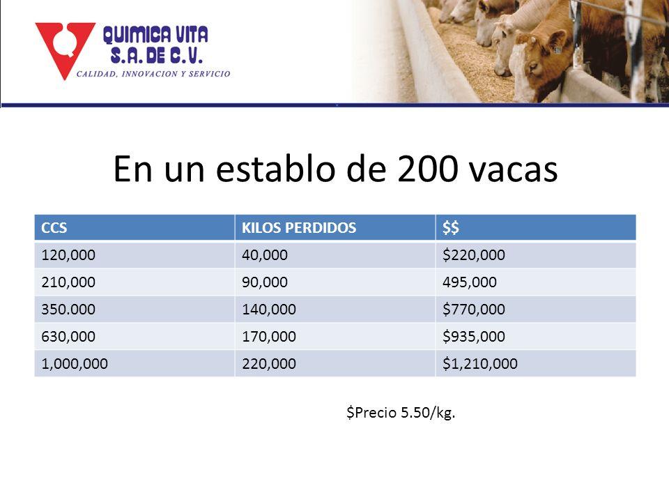 En un establo de 200 vacas CCS KILOS PERDIDOS $$ 120,000 40,000