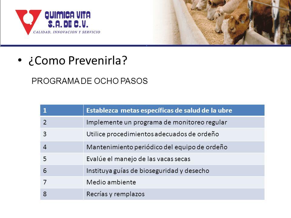 ¿Como Prevenirla PROGRAMA DE OCHO PASOS 1