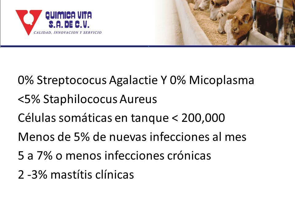 0% Streptococus Agalactie Y 0% Micoplasma <5% Staphilococus Aureus Células somáticas en tanque < 200,000 Menos de 5% de nuevas infecciones al mes 5 a 7% o menos infecciones crónicas 2 -3% mastítis clínicas