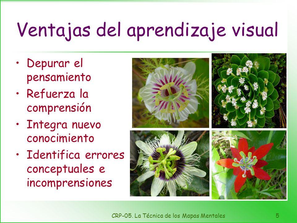 Ventajas del aprendizaje visual