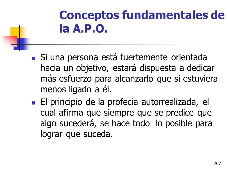 Conceptos fundamentales de la A.P.O.