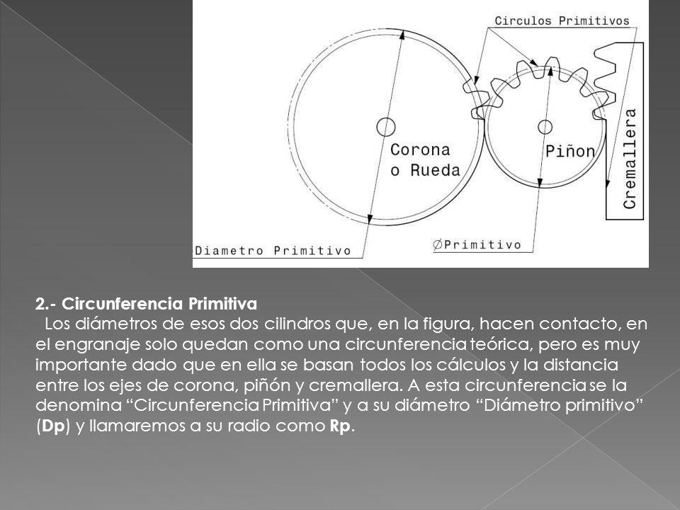 2.- Circunferencia Primitiva