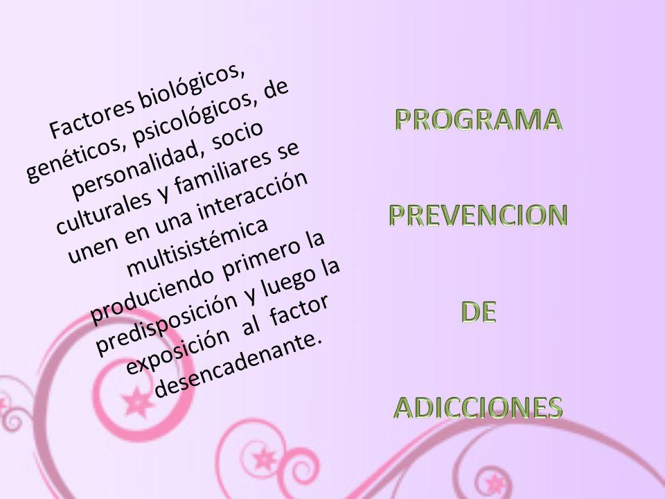 PROGRAMA PREVENCION DE ADICCIONES