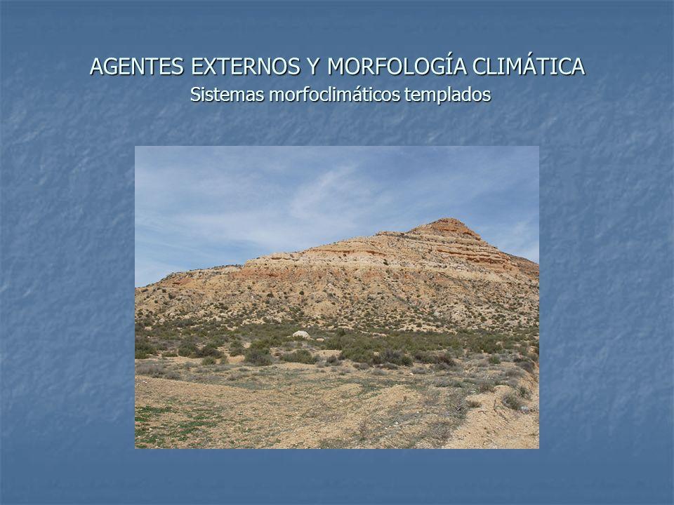 AGENTES EXTERNOS Y MORFOLOGÍA CLIMÁTICA Sistemas morfoclimáticos templados