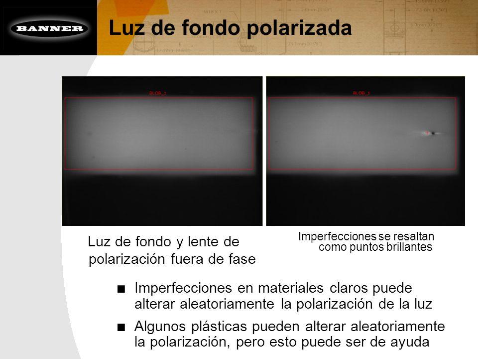 Luz de fondo polarizada