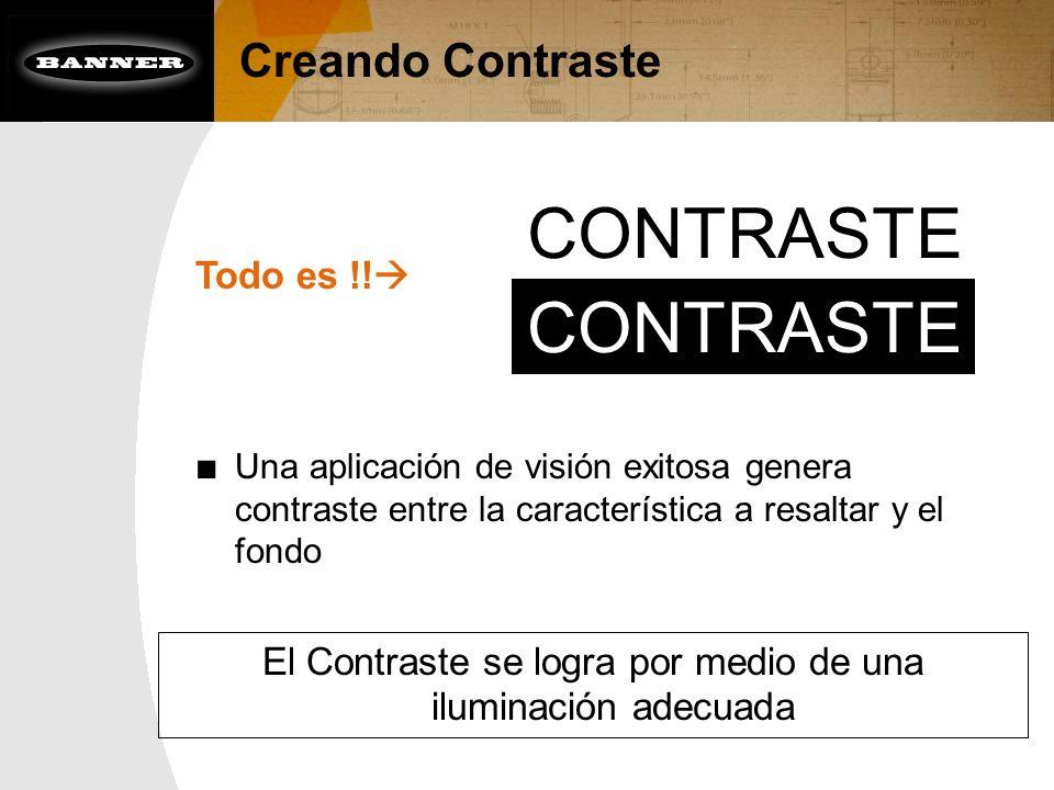El Contraste se logra por medio de una iluminación adecuada