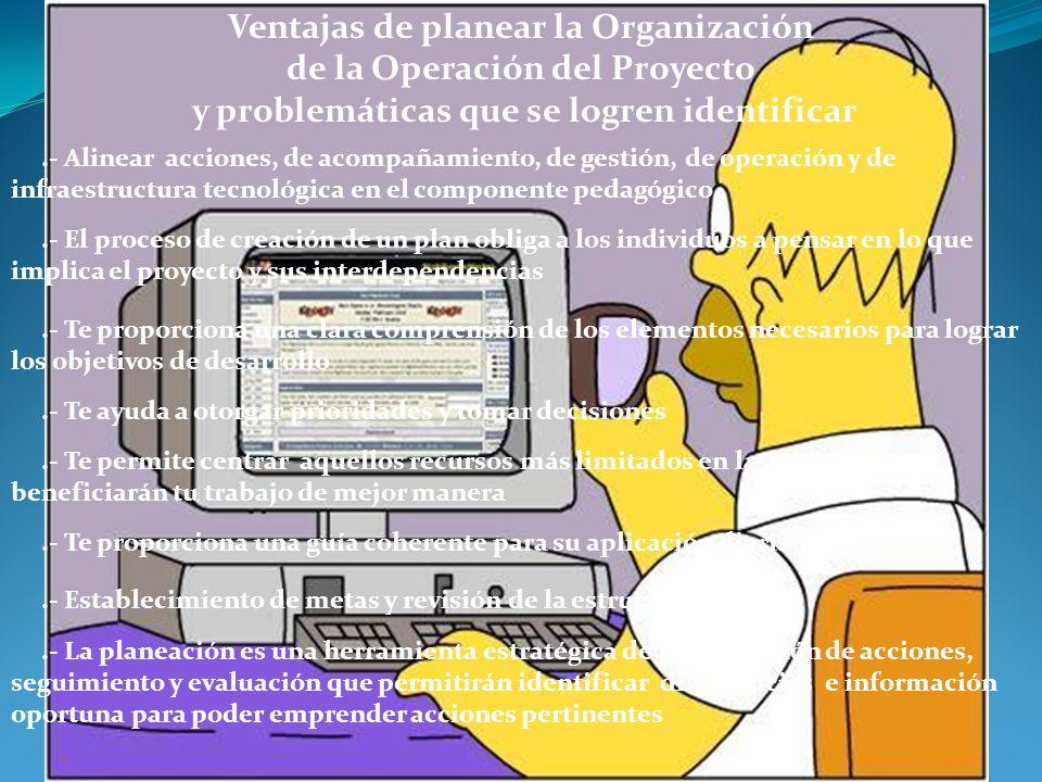 Ventajas de planear la Organización de la Operación del Proyecto