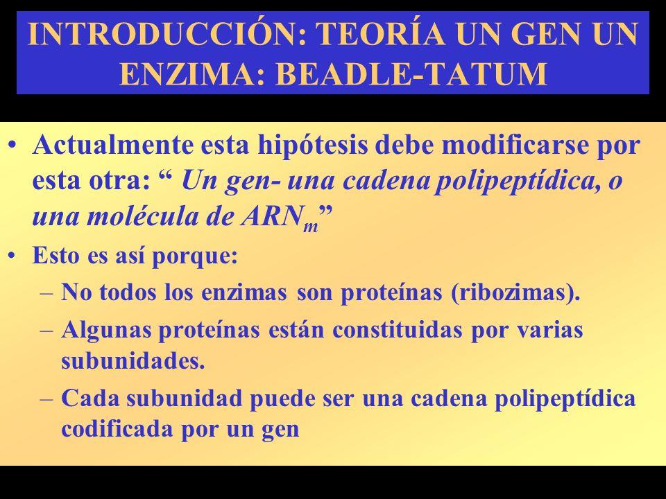 INTRODUCCIÓN: TEORÍA UN GEN UN ENZIMA: BEADLE-TATUM