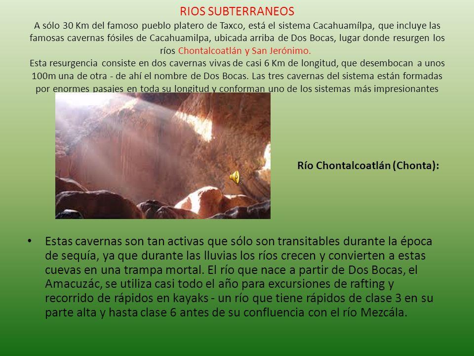 RIOS SUBTERRANEOS A sólo 30 Km del famoso pueblo platero de Taxco, está el sistema Cacahuamílpa, que incluye las famosas cavernas fósiles de Cacahuamilpa, ubicada arriba de Dos Bocas, lugar donde resurgen los ríos Chontalcoatlán y San Jerónimo. Esta resurgencia consiste en dos cavernas vivas de casi 6 Km de longitud, que desembocan a unos 100m una de otra - de ahí el nombre de Dos Bocas. Las tres cavernas del sistema están formadas por enormes pasajes en toda su longitud y conforman uno de los sistemas más impresionantes que existen.