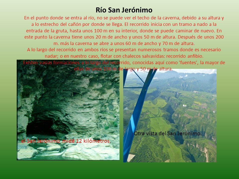 Río San Jerónimo En el punto donde se entra al río, no se puede ver el techo de la caverna, debido a su altura y a lo estrecho del cañón por donde se llega. El recorrido inicia con un tramo a nado a la entrada de la gruta, hasta unos 100 m en su interior, donde se puede caminar de nuevo. En este punto la caverna tiene unos 20 m de ancho y unos 50 m de altura. Después de unos 200 m. más la caverna se abre a unos 60 m de ancho y 70 m de altura. A lo largo del recorrido en ambos ríos se presentan numerosos tramos donde es necesario nadar; o en nuestro caso, flotar con chalecos salvavidas: recorrido anfibio. Existen varias formaciones a lo largo del recorrido, conocidas aquí como fuentes , la mayor de ellas de unos 100 m de largo y 50 m de altura.
