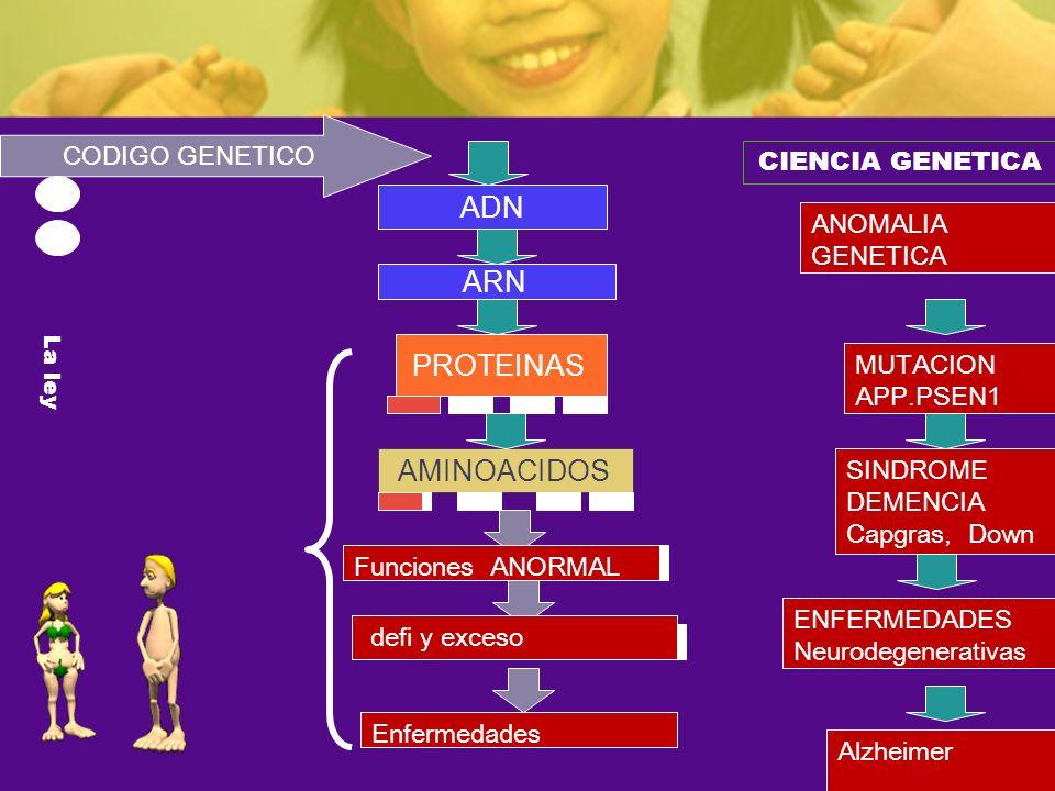 ADN ARN PROTEINAS AMINOACIDOS CODIGO GENETICO CIENCIA GENETICA