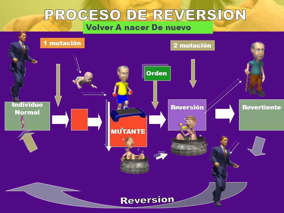 PROCESO DE REVERSION Reversion Volver A nacer De nuevo 1 mutación