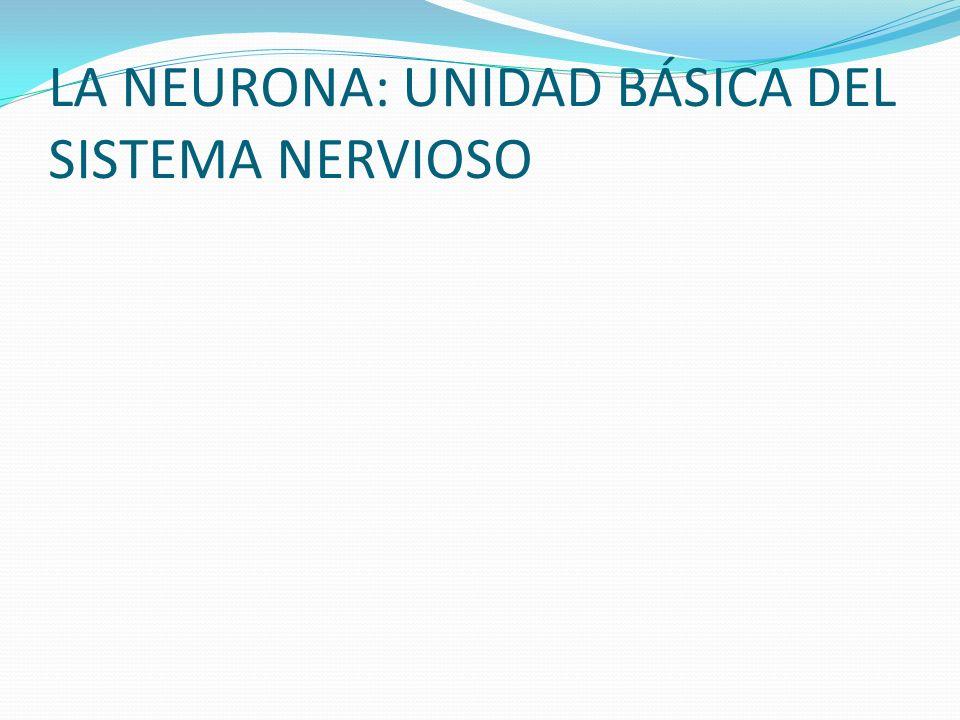LA NEURONA: UNIDAD BÁSICA DEL SISTEMA NERVIOSO