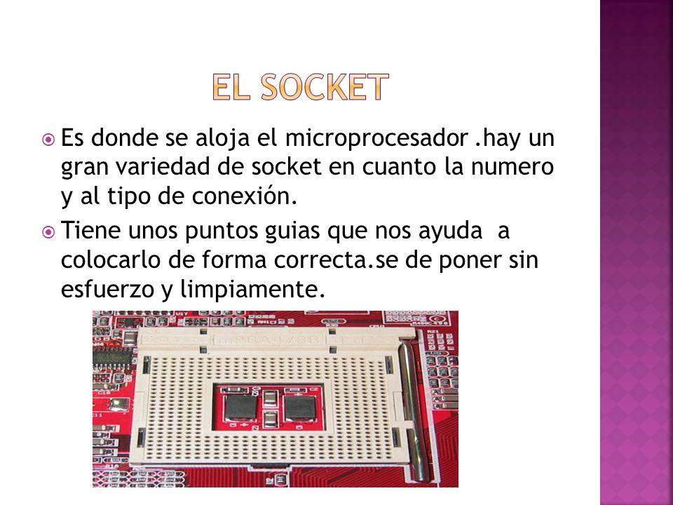 EL SOCKET Es donde se aloja el microprocesador .hay un gran variedad de socket en cuanto la numero y al tipo de conexión.