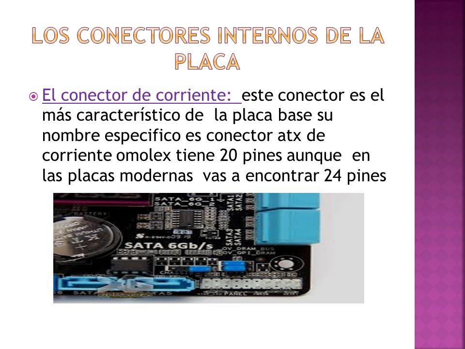 Los conectores internos de la placa