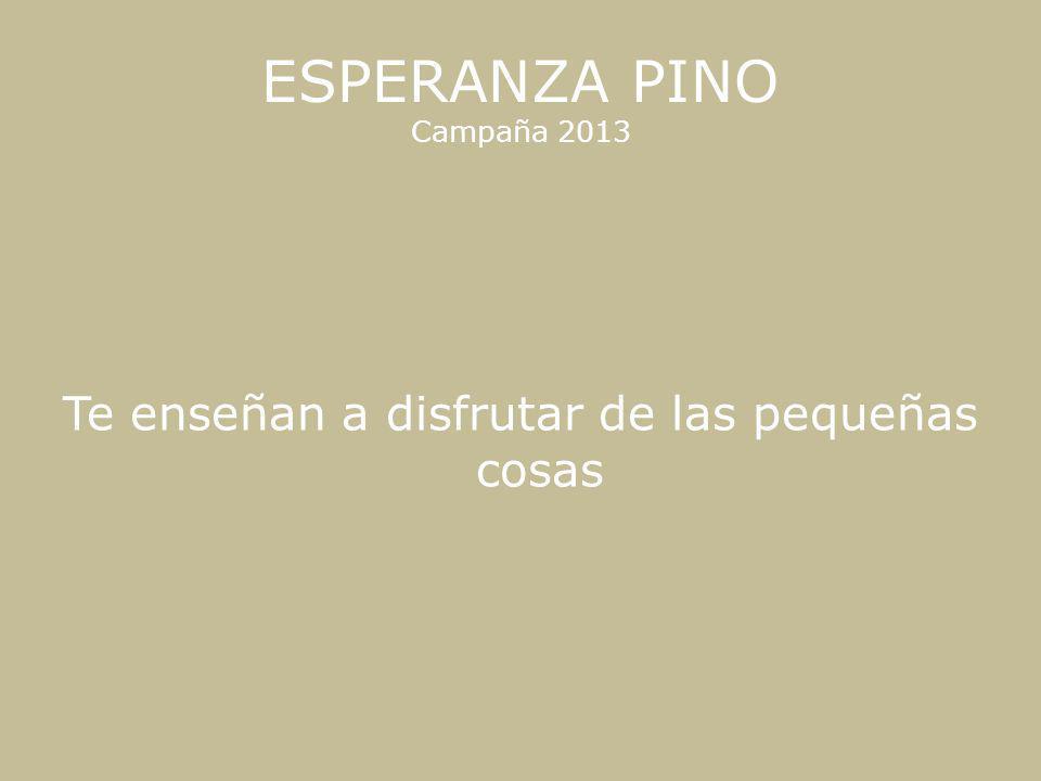 ESPERANZA PINO Campaña 2013