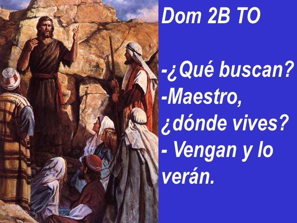 Dom 2B TO -¿Qué buscan -Maestro, ¿dónde vives - Vengan y lo verán.