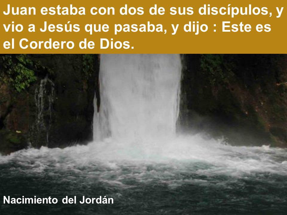 Juan estaba con dos de sus discípulos, y vio a Jesús que pasaba, y dijo : Este es el Cordero de Dios.