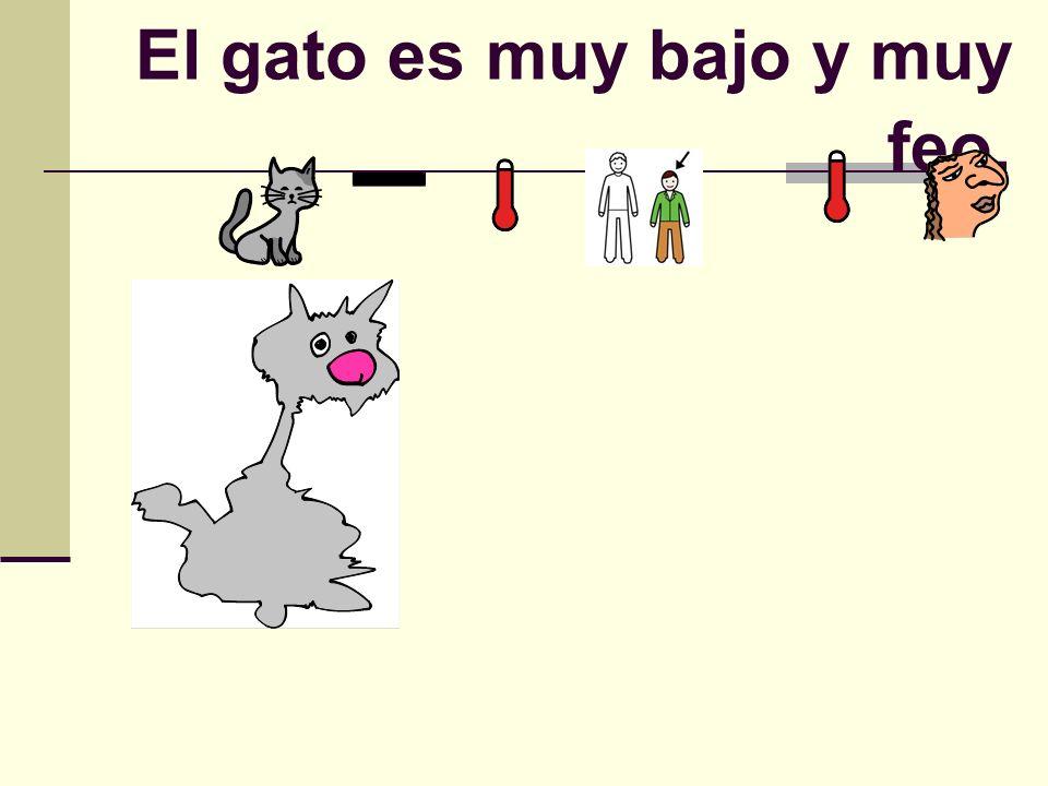 El gato es muy bajo y muy feo.
