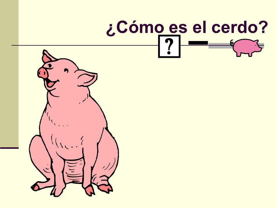 ¿Cómo es el cerdo