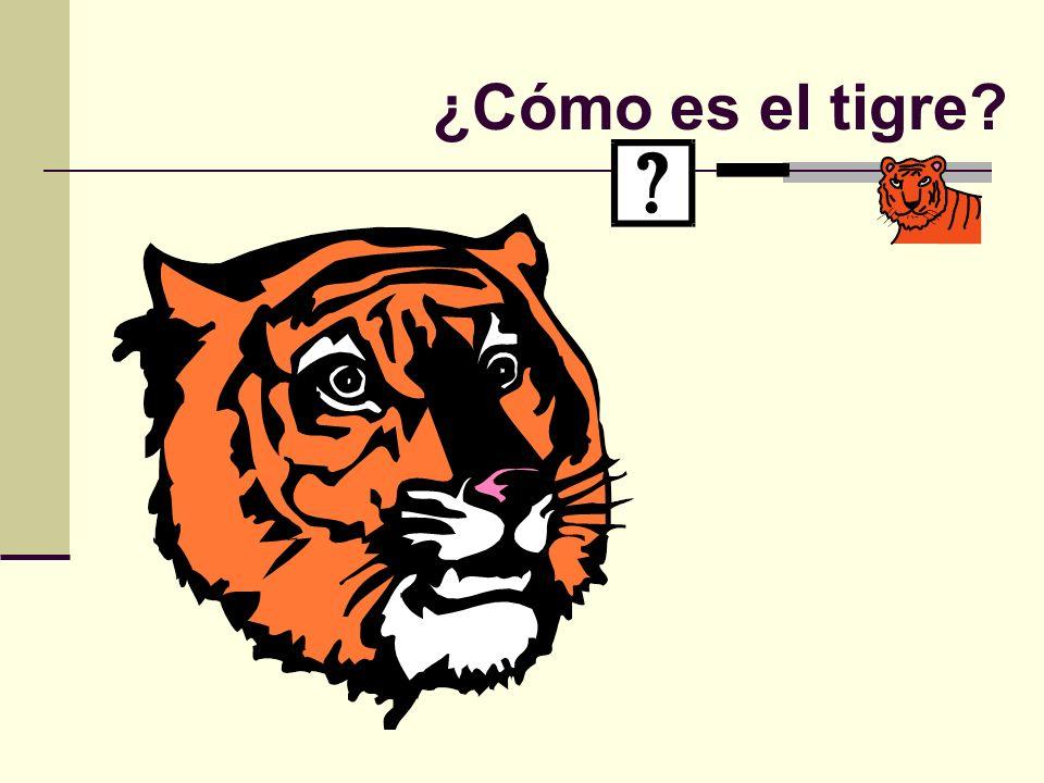 ¿Cómo es el tigre