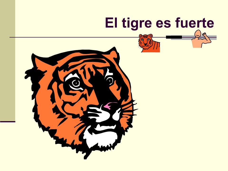 El tigre es fuerte