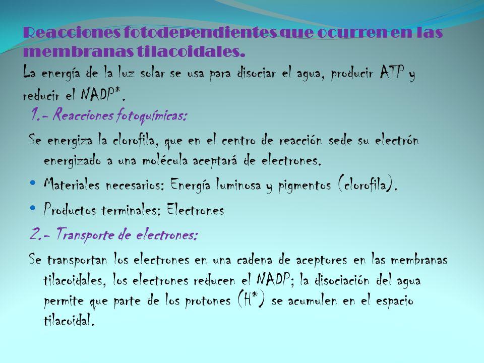 1.- Reacciones fotoquímicas: