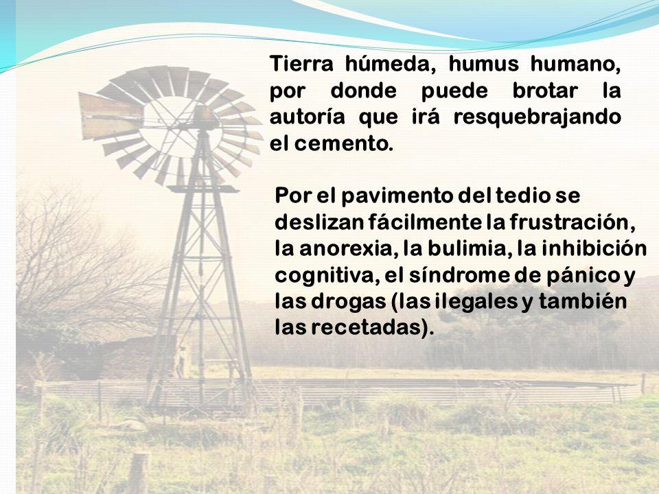 Tierra húmeda, humus humano, por donde puede brotar la autoría que irá resquebrajando el cemento.