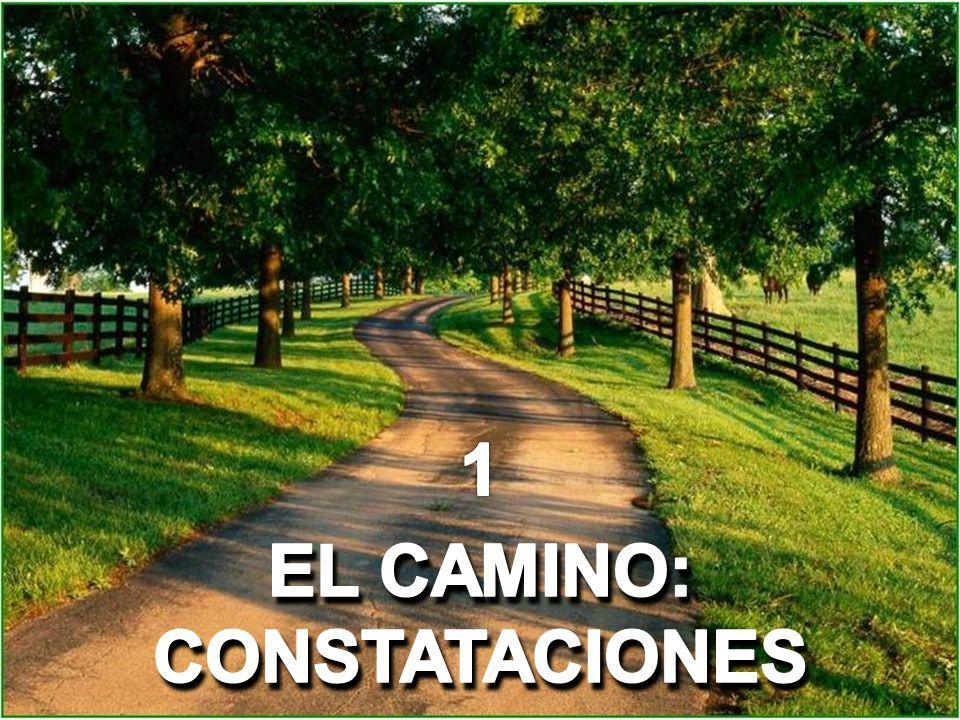 1 EL CAMINO: CONSTATACIONES