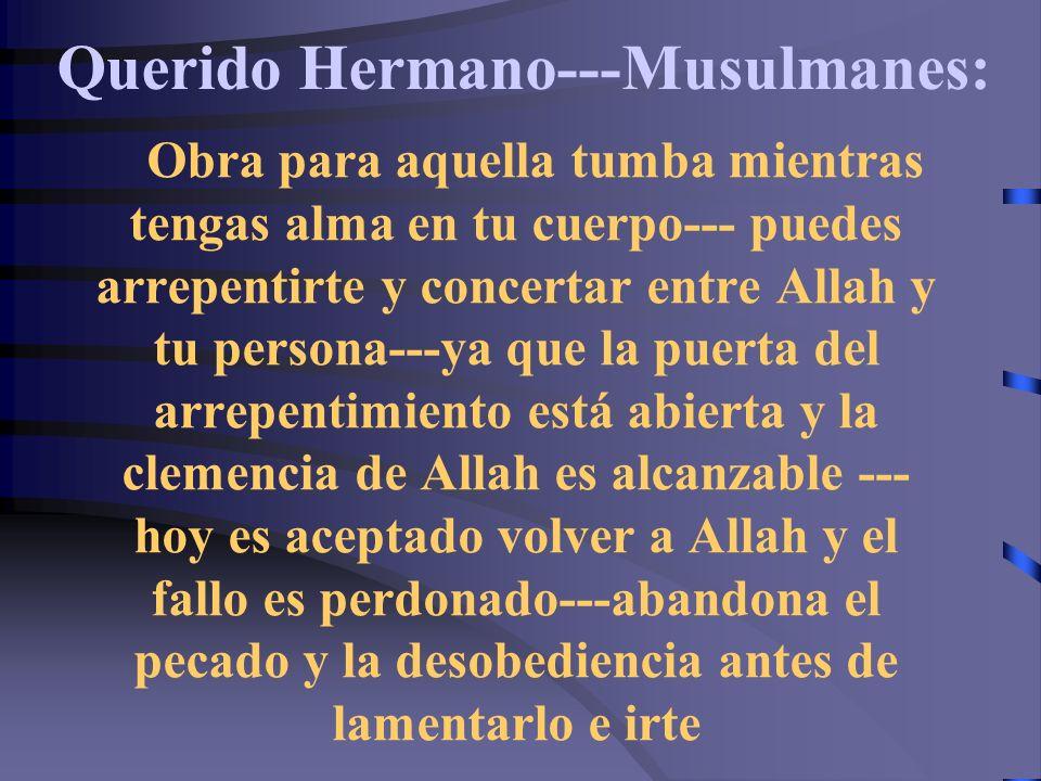 Querido Hermano---Musulmanes:
