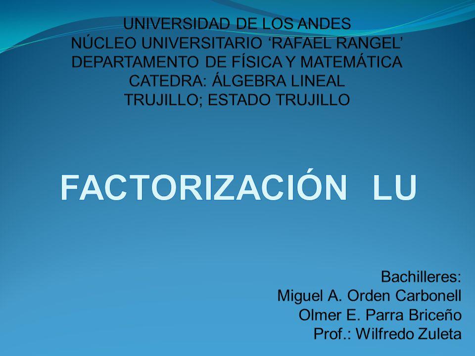 FACTORIZACIÓN LU Bachilleres: