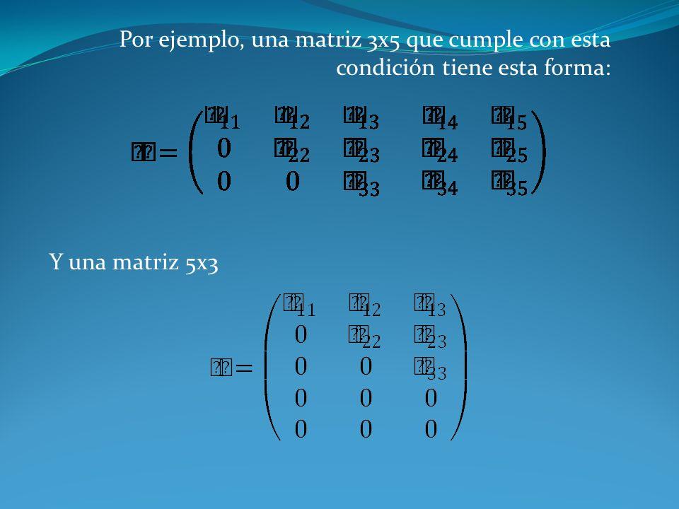 Por ejemplo, una matriz 3x5 que cumple con esta condición tiene esta forma: