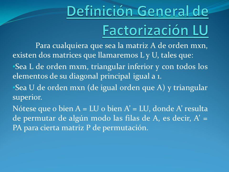 Definición General de Factorización LU