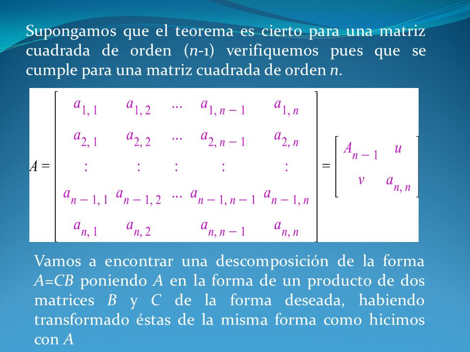 Supongamos que el teorema es cierto para una matriz cuadrada de orden (n-1) verifiquemos pues que se cumple para una matriz cuadrada de orden n.