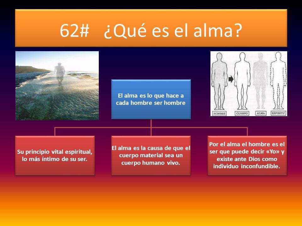 62# ¿Qué es el alma El alma es lo que hace a cada hombre ser hombre