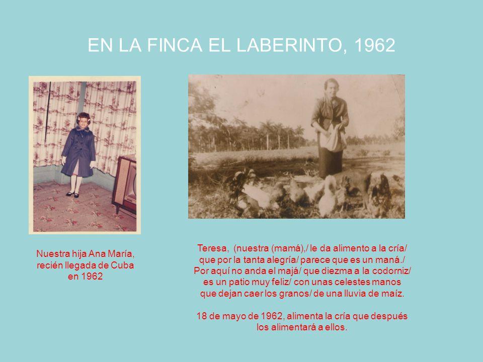 EN LA FINCA EL LABERINTO, 1962